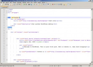 view on notepad++